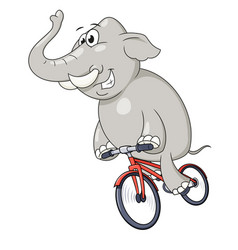 happy elephant riding bicycle vector image