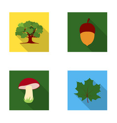 Oak acorn edible mushroom maple leafforest set vector