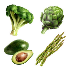 Set of vegetables in realistic style vector
