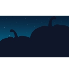 Silhouette of big pumpkins Halloween backgrounds vector image