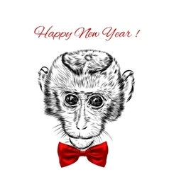 Sketch monkey face with red bow Hand drawn doodle vector image