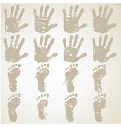 collection hands and feet prints vector image vector image