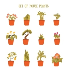 Plant in a pot set decorative element for vector image vector image