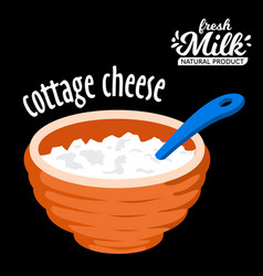 homemade cottage cheese in a bowl icon vector image