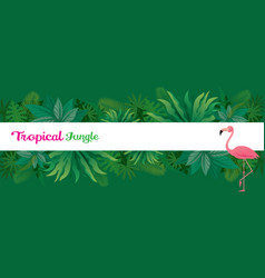 Pink flamingo with tropical jungle frame vector