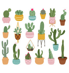 potted cactus cute desert cactus succulents and vector image