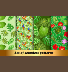 Set seamless patterns tropical flora and fauna vector