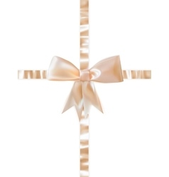 Beautiful bow on white background EPS 10 vector image vector image