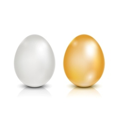 Brown and white eggs vector image