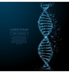 Abstract DNA concept vector