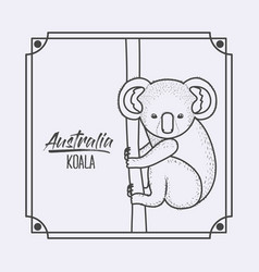 australia koala in frame and monochrome silhouette vector image