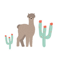 cute llama or cria isolated on white background vector image