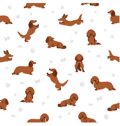 Dachshund long haired seamless pattern different vector