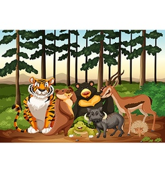 Many animals living in the jungle vector