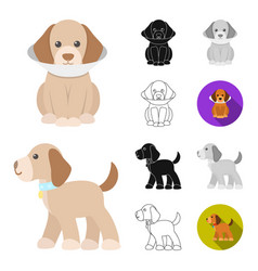 Pet dog cartoonblackflatmonochromeoutline vector