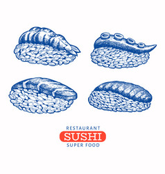 sushi nigiri hand drawn japanese cuisine vector image