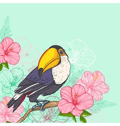 Pink tropical flowers and toucan vector image vector image