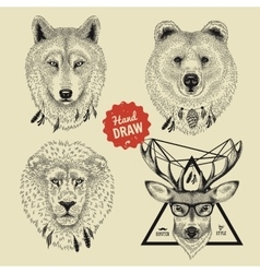 sketch of wild animal heads bear wolf deer vector image