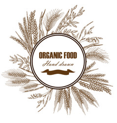 Bakery design template hand drawn wheat vector