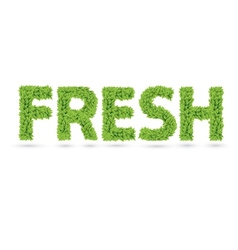 Fresh text of green leaves vector image