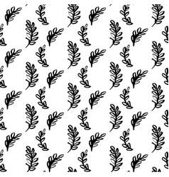 natural plants brush seamless pattern vector image