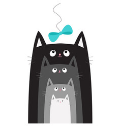 Black gray cat head looking at blue bow hanging on vector