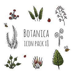 Botanica - stylized eight items colored icon set vector