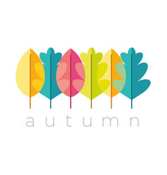Color autumn leaves logo vector