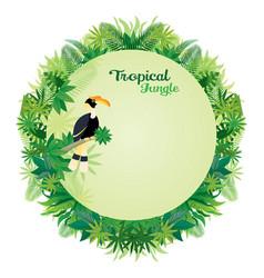 Hornbill bird with tropical jungle round frame vector