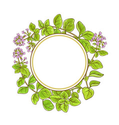 oregano branch frame vector image