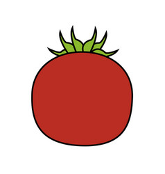 red tomato icon image vector image