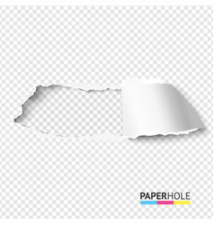 Rip paper hole on transparent background vector