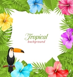 Tropical Background with Toucan Bird Colorful vector