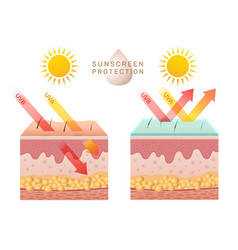 Uv skin protection damaged human skin peels vector