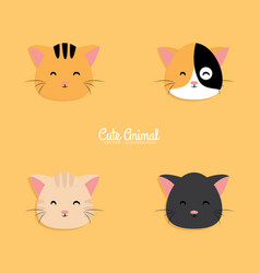 cat cartoon faces vector image