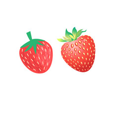 vibrant delicious strawberries vector image