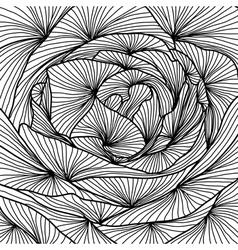 decorative rose close up vector image