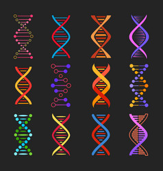 dna helix icons genetics medicine vector image