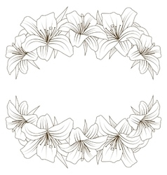 floral background with beautiful lilies vector image