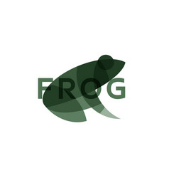 frog the effect of overlay modern vector image