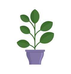 High houseplant icon flat style vector