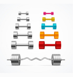 realistic detailed 3d dumbbell and barbell set vector image