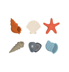 sea shell icons in cartoon style set of vector image