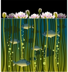Water lilly and fish vector