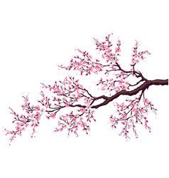 Branch of a blossoming cherry vector image vector image