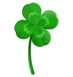 green lucky four leaf clover symbol of st vector image