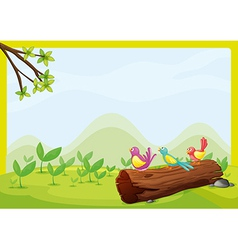 Birds sitting on a dry wood vector image vector image