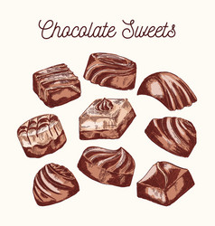 Collection of chocolate sweets vector