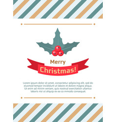 holly berry leaves christmas card vector image