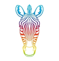 Zebra rainbow head vector image